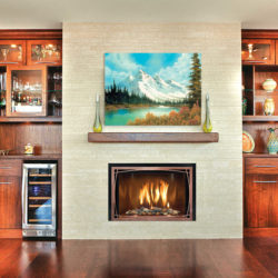 Mendota Fireplace Insert FV44i Decor Willowbrook