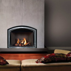 Mendota Fireplace Inserts FV44i Decor Willowbrook