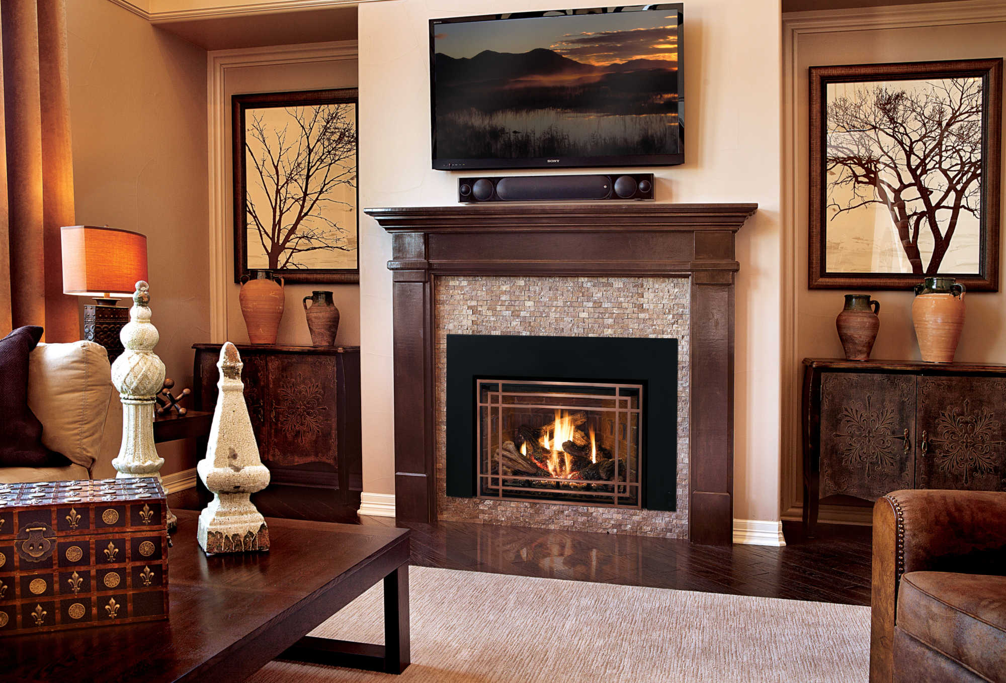 Gas Inserts Bellevue Fireplace Shop
