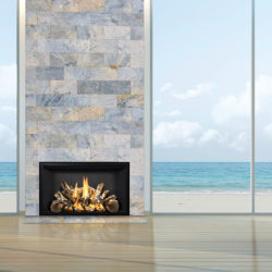 Mendota Gas Fireplaces FV42 Birch