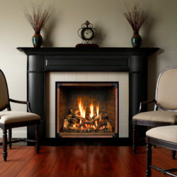 Mendota Gas Fireplaces FV46 Traditions