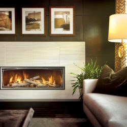 Mendota Gas Fireplaces ML47 Decor Willowbrook