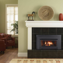 Regency Fireplace Inserts E21-3