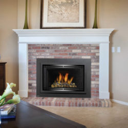 Regency Fireplace Inserts HRI4E-B