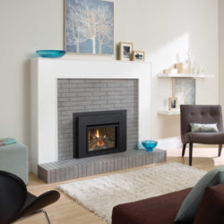 Regency Fireplace Inserts L234-1