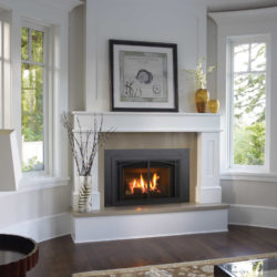 Regency Fireplace Inserts LRI4E-4