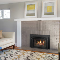 Regency Fireplace Inserts LRI4E-5