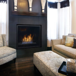 Regency Gas Fireplaces HZ965E-2