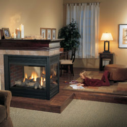 Regency Gas Fireplaces P131-1